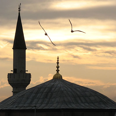 seagulls flying over the Kucuk Aya Sofia Mosque, Istanbul at The Cheshire Cat Blog
