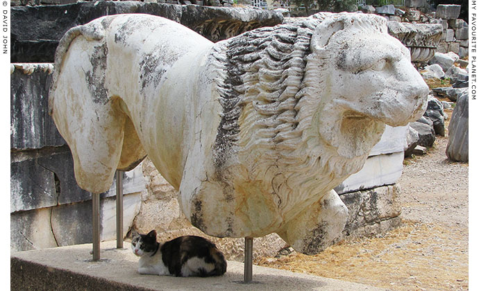 A cat sits in the shade of an ancient marble lion in Didyma, Aydin Province, Turkey at The Cheshire Cat Blog