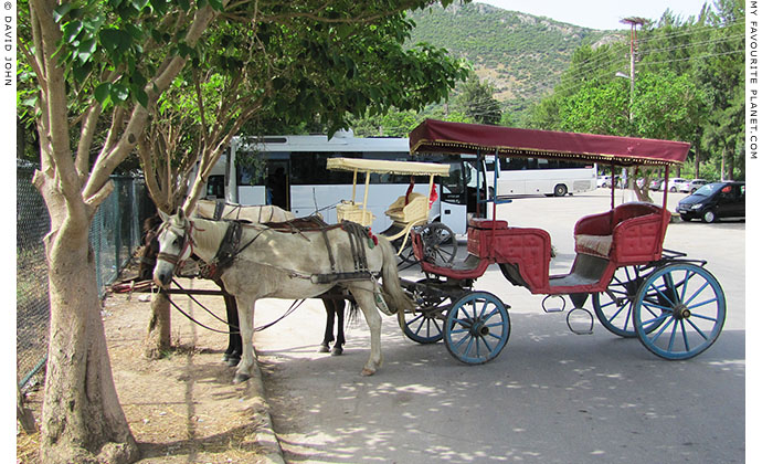 Horse-drawn faytons outside the entrance to the archaeological site of Ephesus, Turkey at The Cheshire Cat Blog