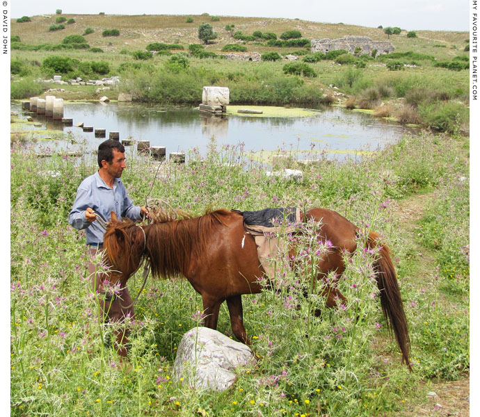 A cowboy and his pony in the harbour of ancient Miletos, Turkey at The Cheshire Cat Blog