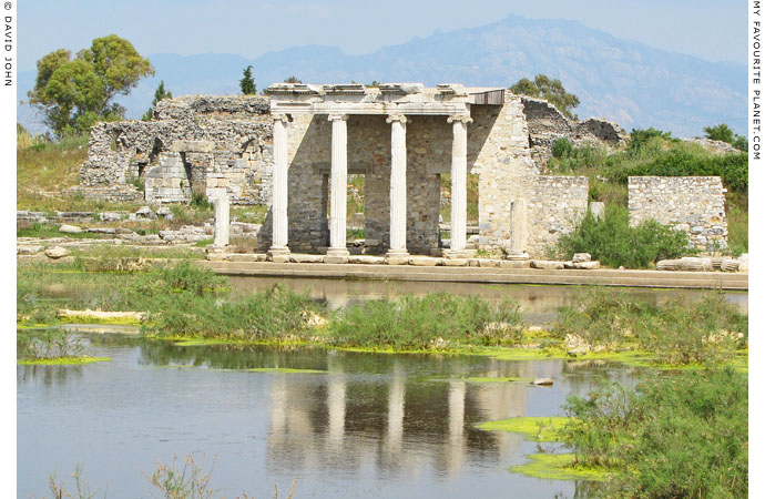 The ruins of an Ionic stoa in ancient Miletus, Turkey at The Cheshire Cat Blog