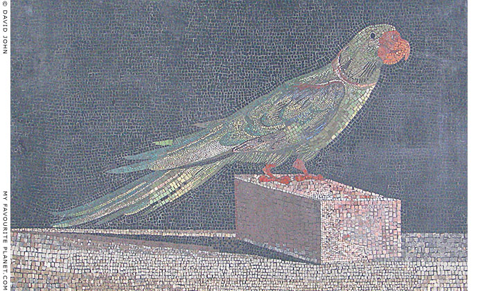 Mosaic of an Alexandrine parakeet from Pergamon at My Favourite Planet