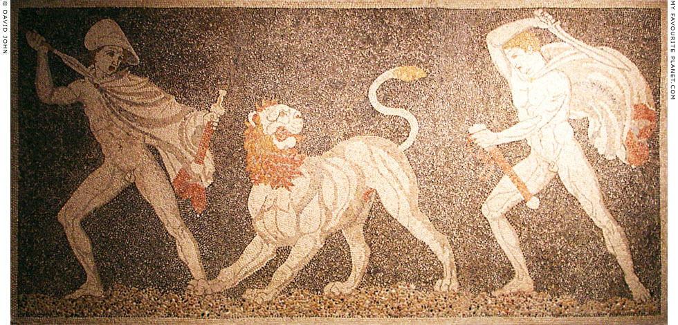 The Lion Hunt mosaic, Pella Archaeological Museum at My Favourite Planet