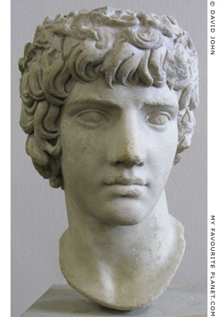 Marble head of Antinous wearing a crown of myrtle at My Favourite Planet