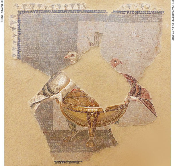 A pair of doves on a mosaic from Delos at My Favourite Planet