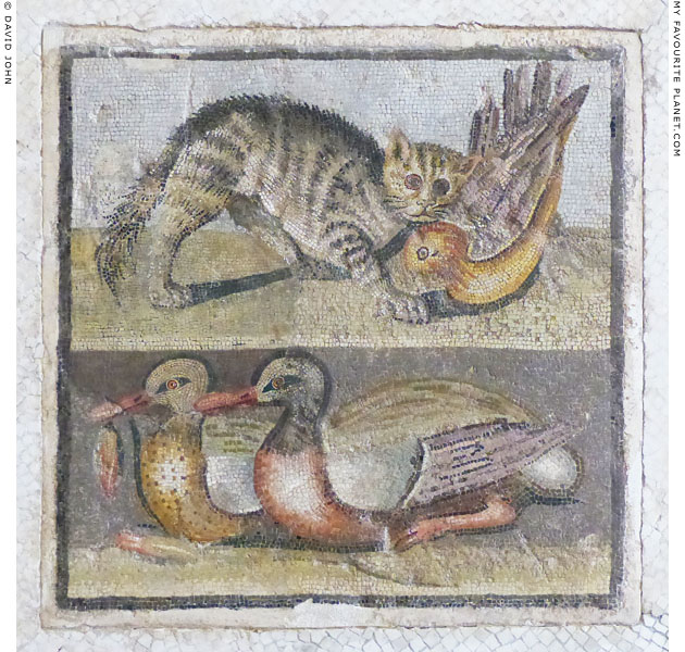 A cat and ducks on a mosaic from Rome at My Favourite Planet
