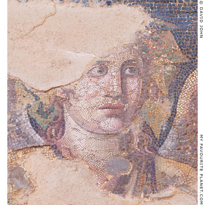 The head of Dionysus of the mosaic from the House of Dionysos, Delos at My Favourite Planet
