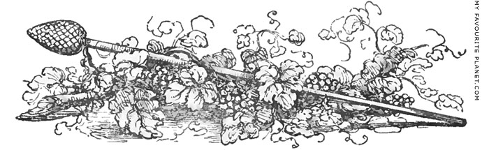 A drawing of a thyrsos with vines by Charles Fellows at My Favourite Planet