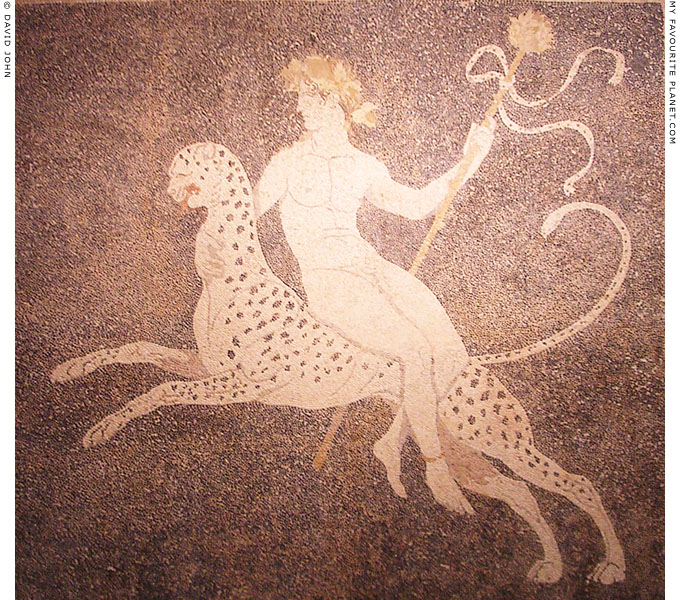 Dionysus riding a panther on a Pebble mosaic in Pella, Macedonia, Greece at My Favourite Planet