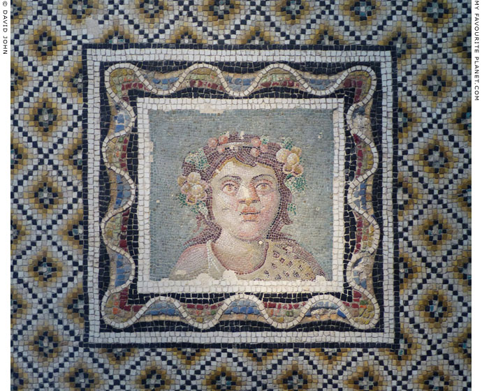 Mosaic emblema depicting Dionysus as a child at My Favourite Planet